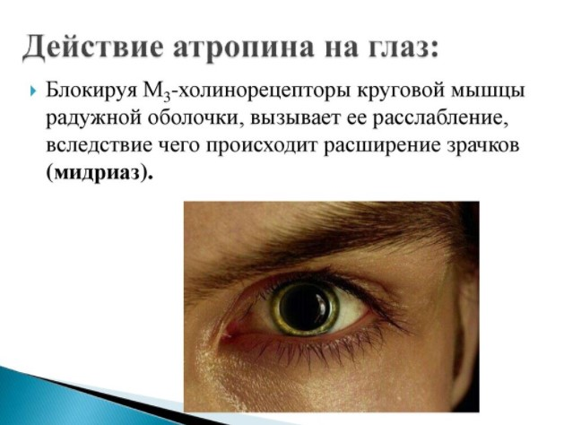 Действие атропина на глаза