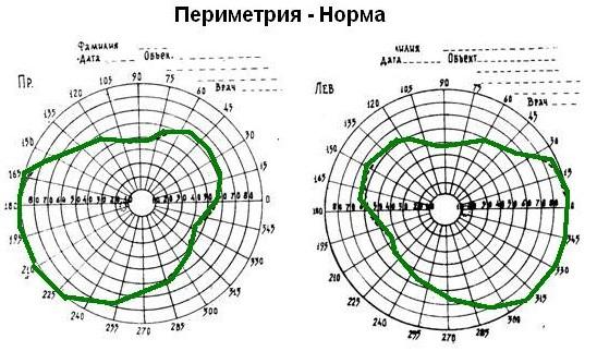 Норма поля зрения
