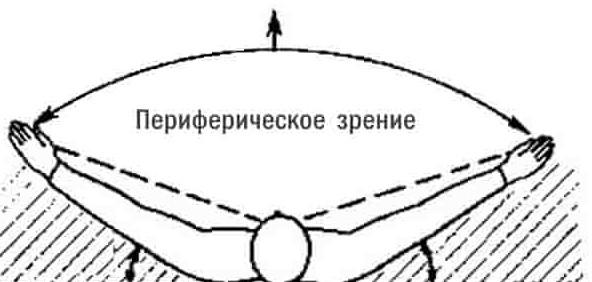 Периферическое зрение