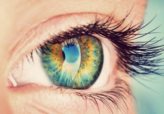Капли от глаукомы Ксонеф