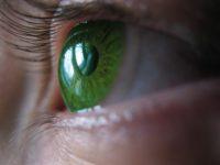 Виды линз для глаз